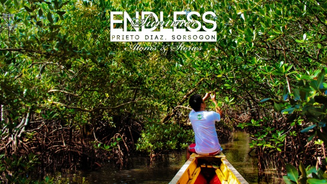Enter the mangrove forest and commune with nature. Who cares if there are spirits there. One thing is for sure: within, there is life!